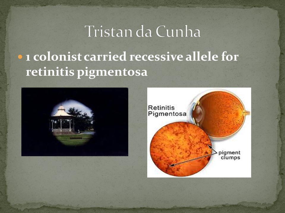 Tristan da Cunha 1 colonist carried recessive allele for retinitis pigmentosa