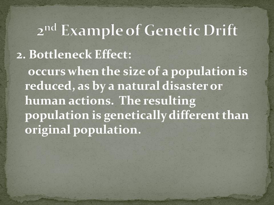 2nd Example of Genetic Drift