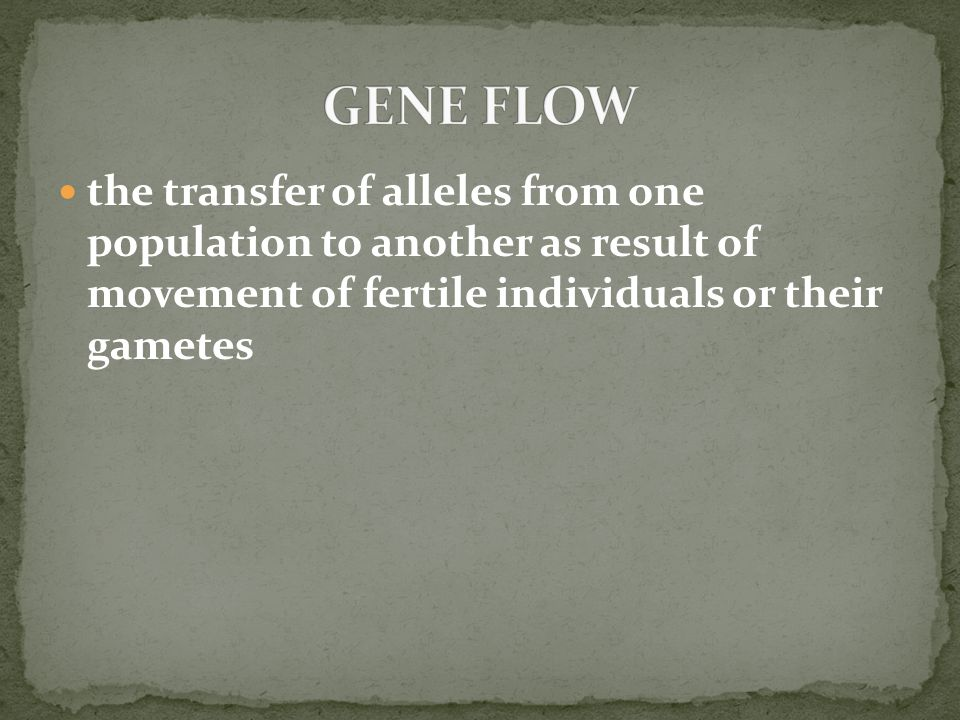 GENE FLOW the transfer of alleles from one population to another as result of movement of fertile individuals or their gametes.