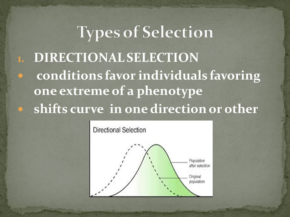 Types of Selection DIRECTIONAL SELECTION