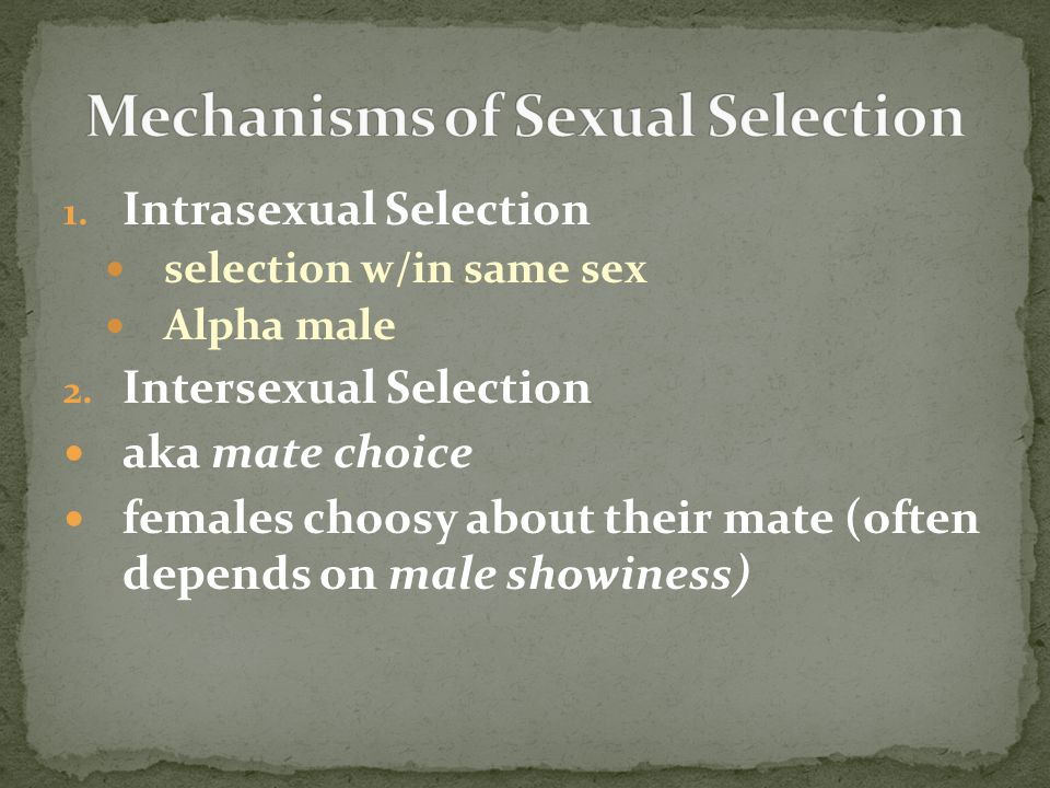 Mechanisms of Sexual Selection