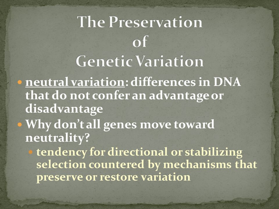The Preservation of Genetic Variation