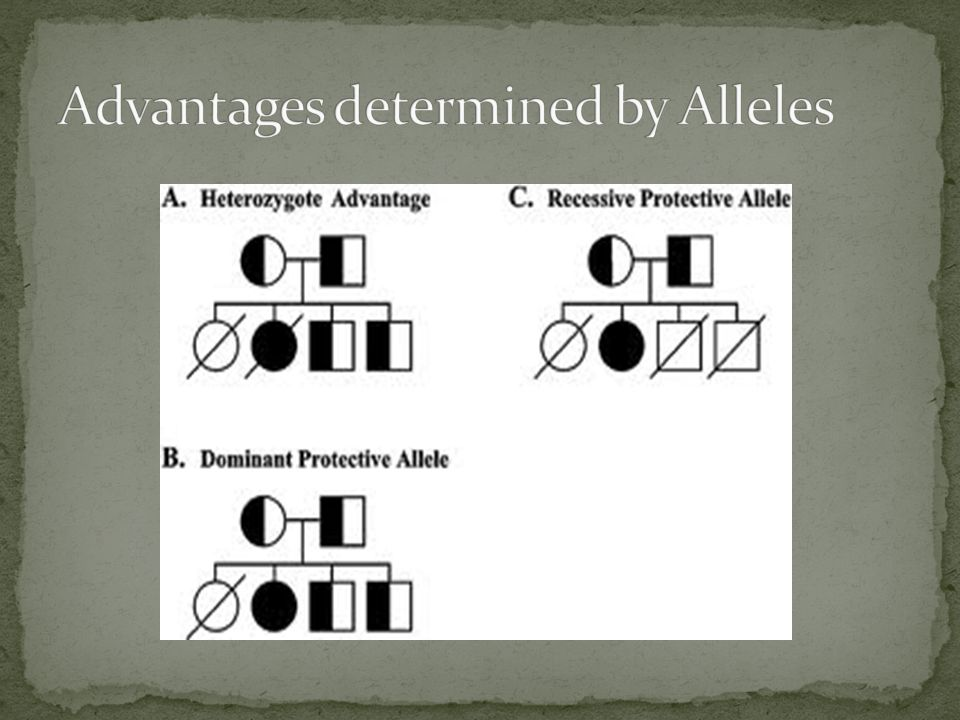 Advantages determined by Alleles