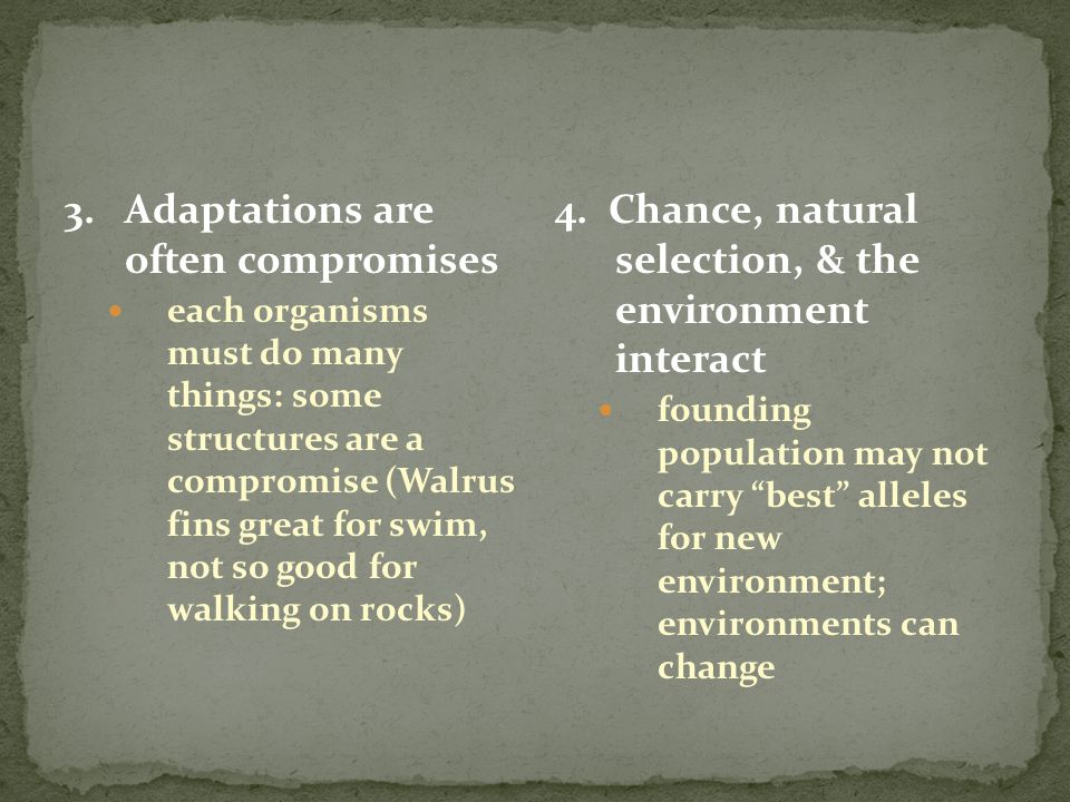 3. Adaptations are often compromises