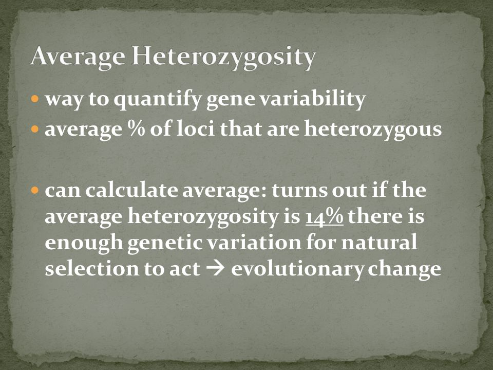 Average Heterozygosity