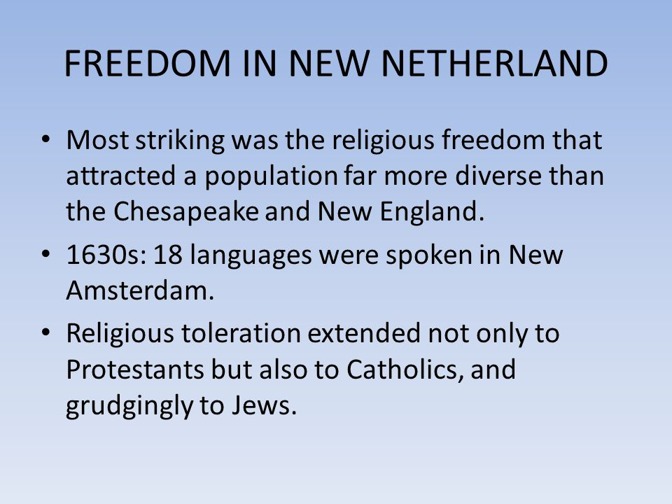 FREEDOM IN NEW NETHERLAND