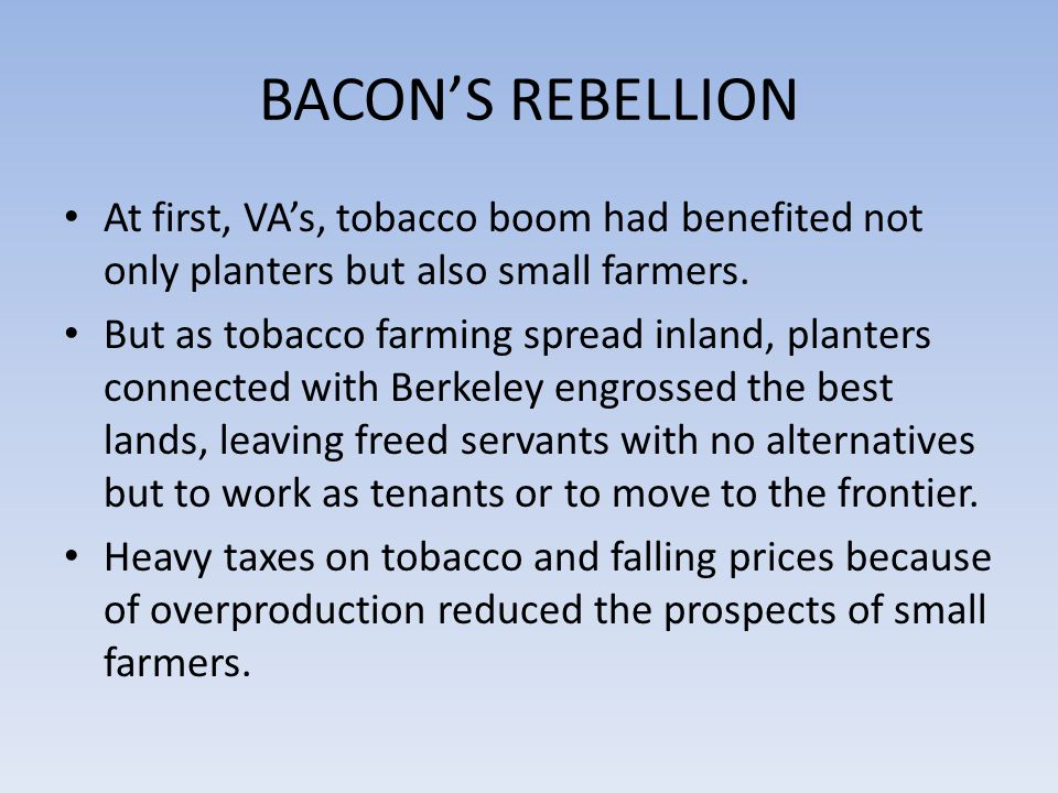 BACON'S REBELLION At first, VA's, tobacco boom had benefited not only planters but also small farmers.