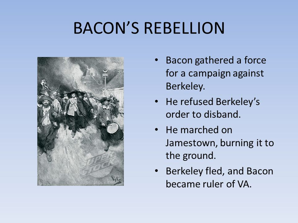 BACON'S REBELLION Bacon gathered a force for a campaign against Berkeley. He refused Berkeley's order to disband.