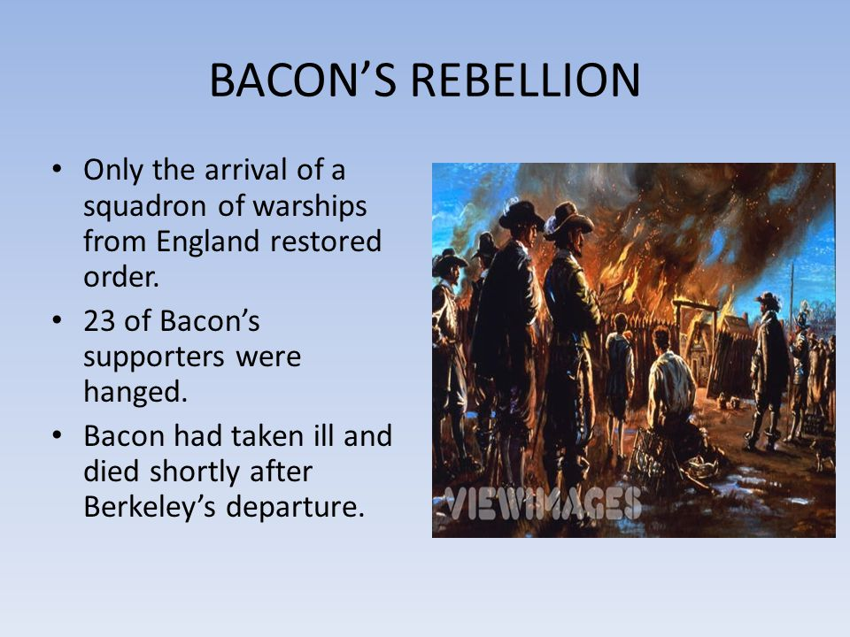 BACON'S REBELLION Only the arrival of a squadron of warships from England restored order. 23 of Bacon's supporters were hanged.