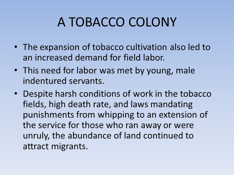 A TOBACCO COLONY The expansion of tobacco cultivation also led to an increased demand for field labor.