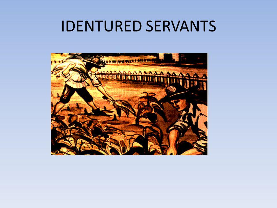 IDENTURED SERVANTS