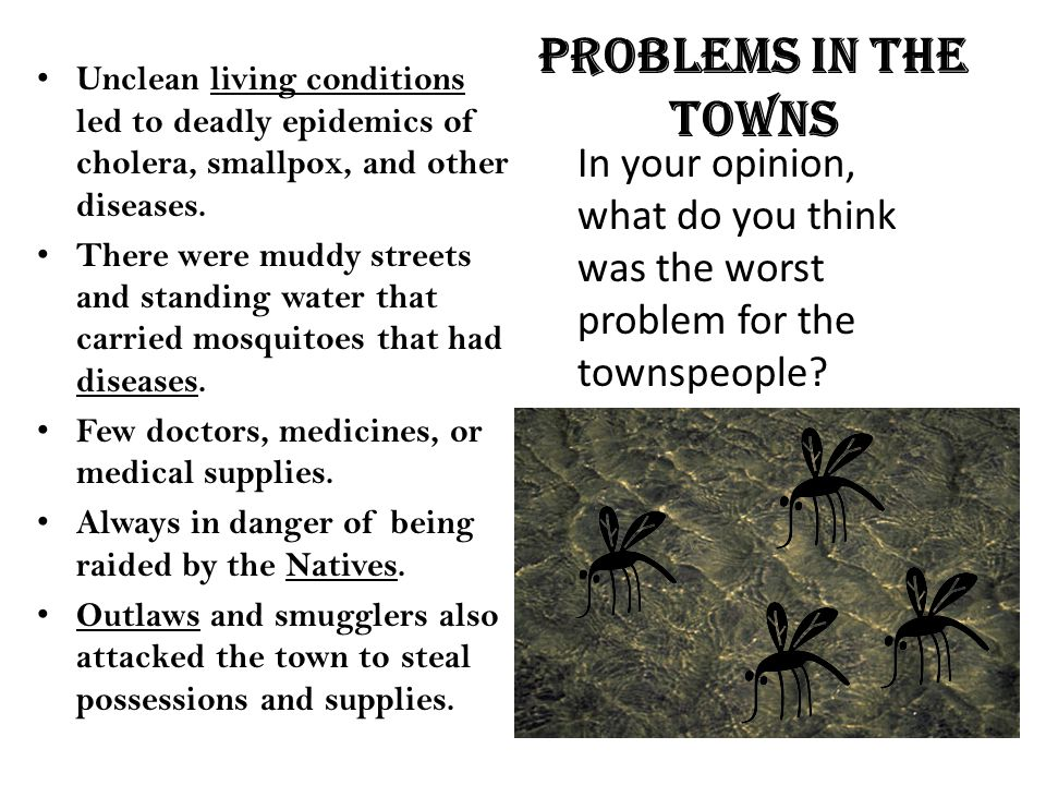Problems in the towns Unclean living conditions led to deadly epidemics of cholera, smallpox, and other diseases.