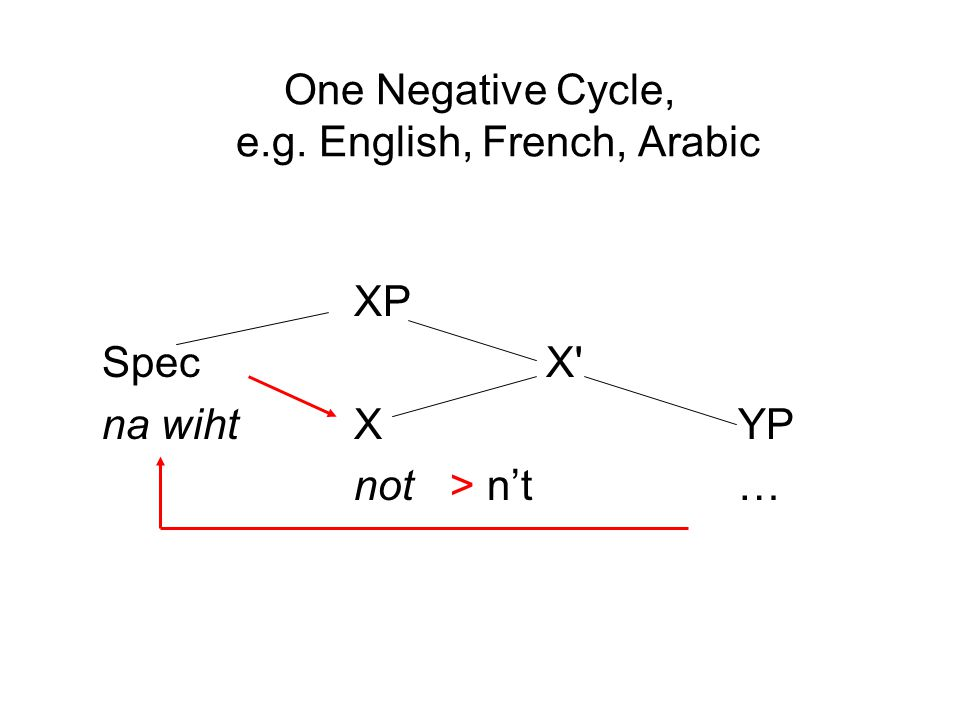 One Negative Cycle, e.g. English, French, Arabic