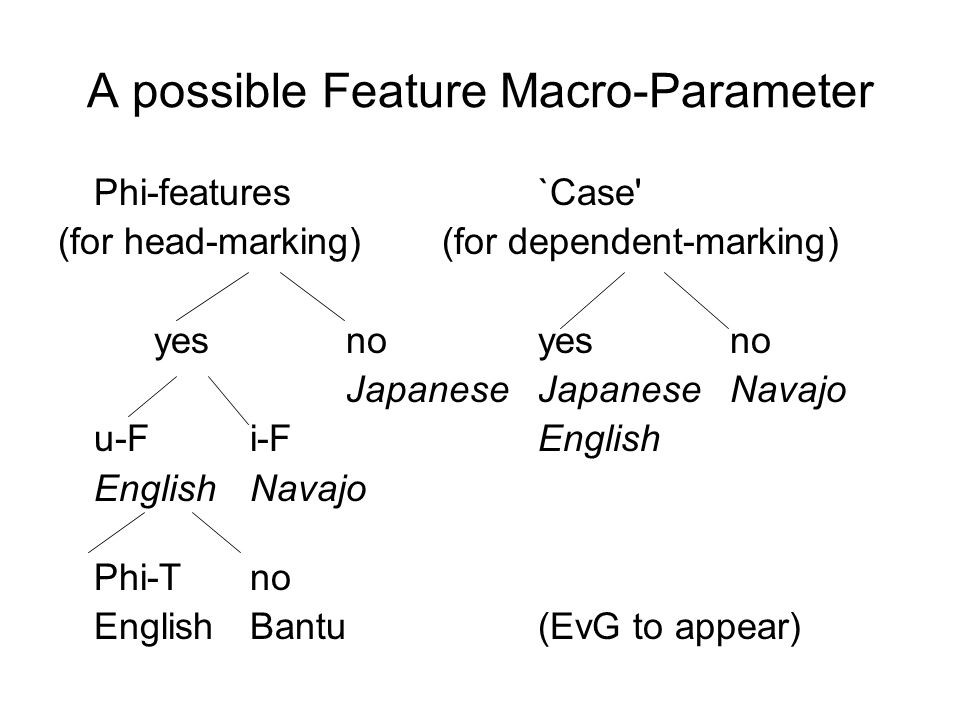 A possible Feature Macro-Parameter