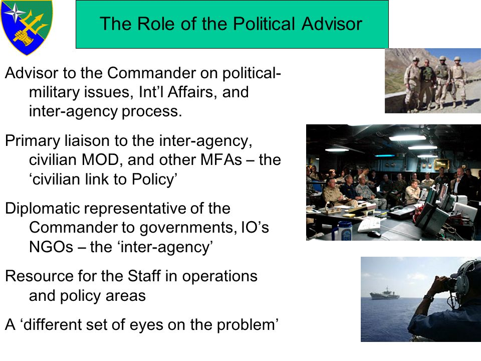 The Role of the Political Advisor