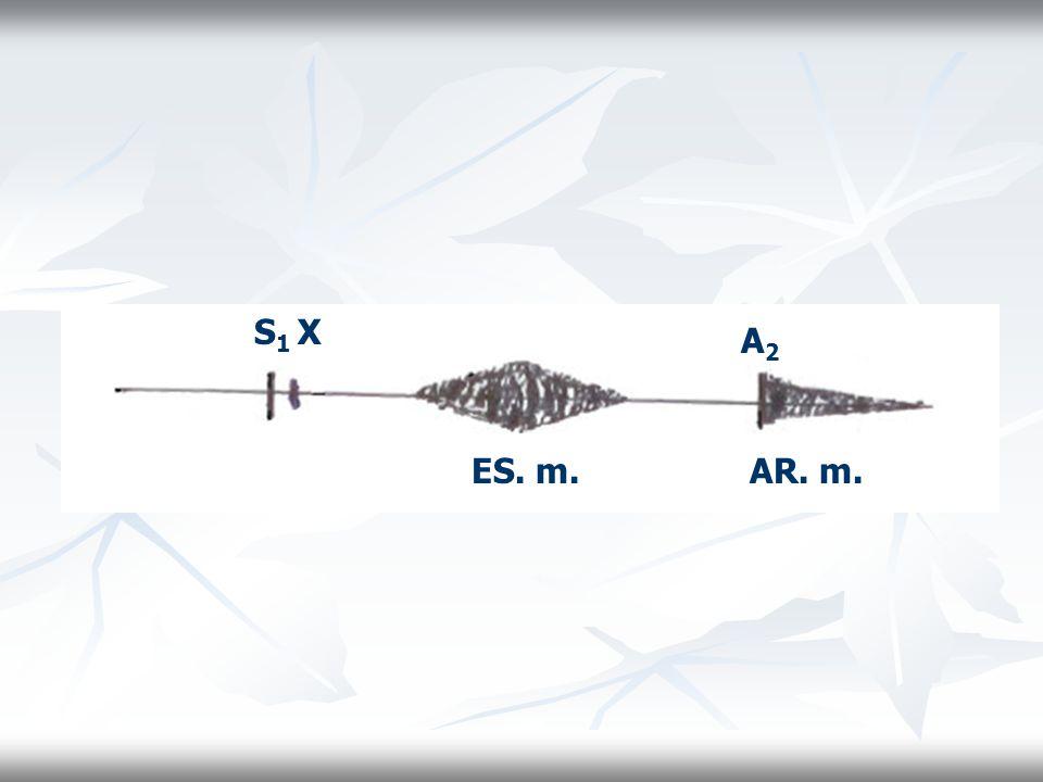 S1 X A2 ES. m. AR. m.