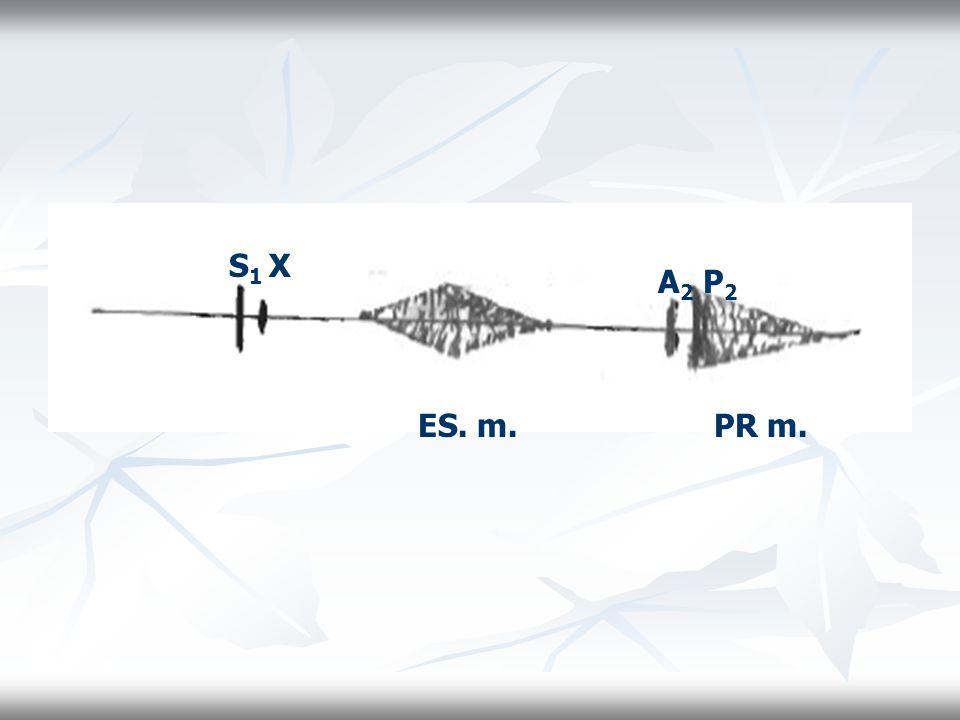 S1 X A2 P2 ES. m. PR m.