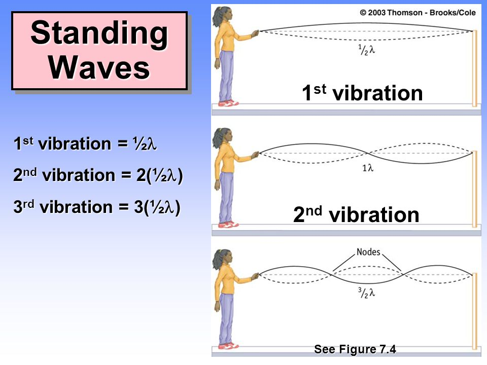 Standing Waves 1st vibration 2nd vibration 1st vibration = ½