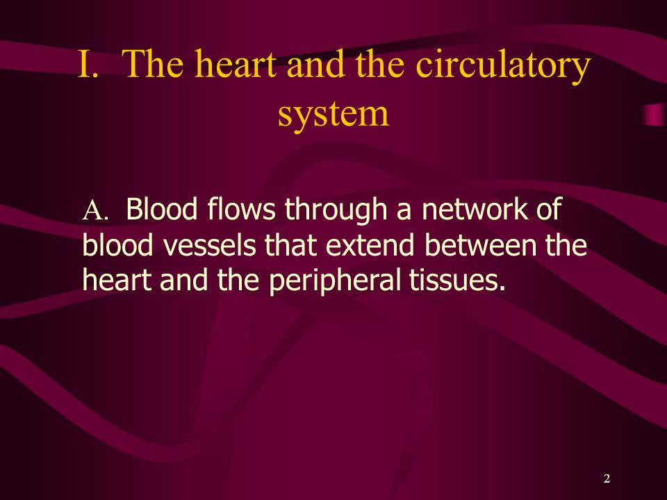 I. The heart and the circulatory system