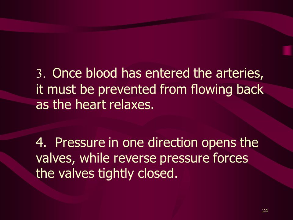 3. Once blood has entered the arteries, it must be prevented from flowing back as the heart relaxes.