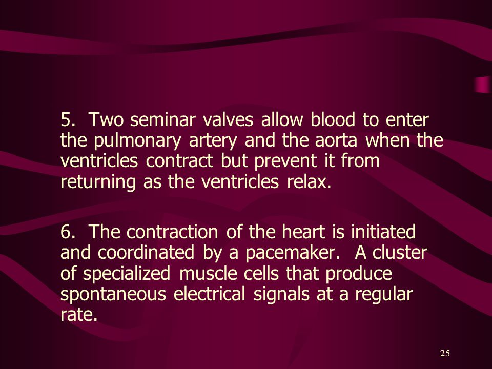 5. Two seminar valves allow blood to enter the pulmonary artery and the aorta when the ventricles contract but prevent it from returning as the ventricles relax.