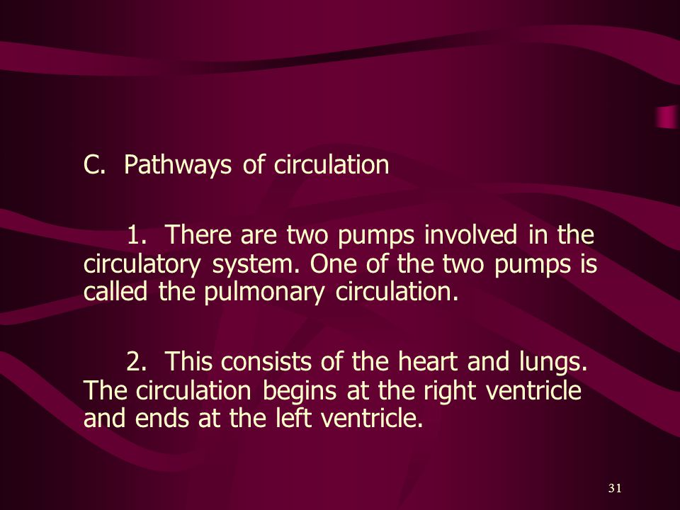 C. Pathways of circulation