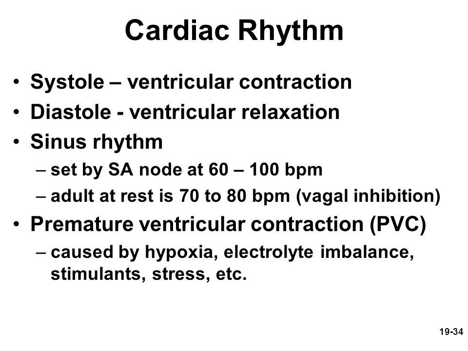 Cardiac Rhythm Systole – ventricular contraction