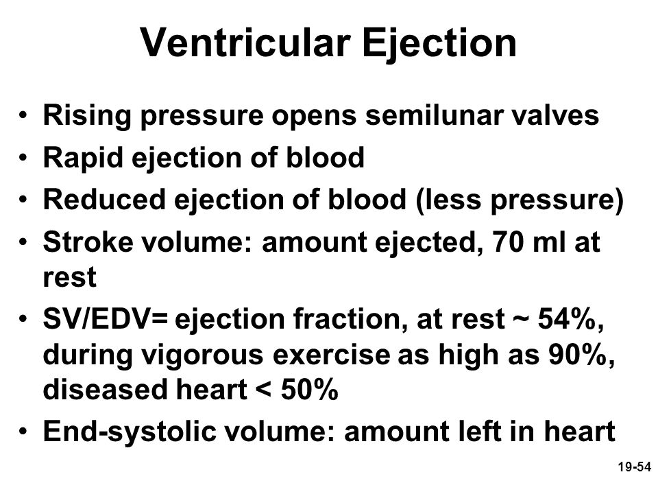 Ventricular Ejection Rising pressure opens semilunar valves
