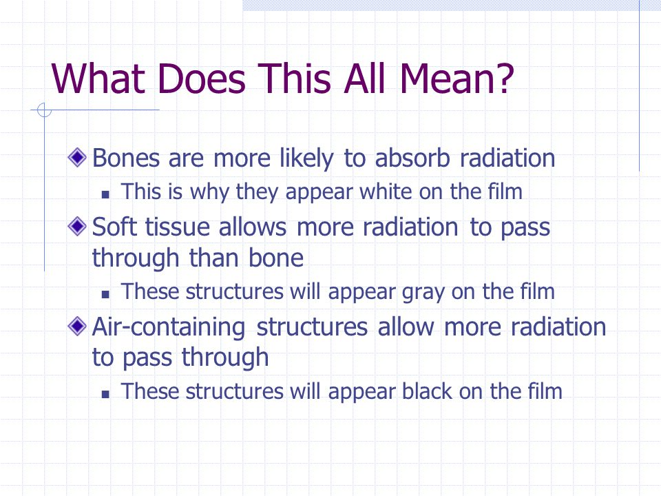 What Does This All Mean Bones are more likely to absorb radiation