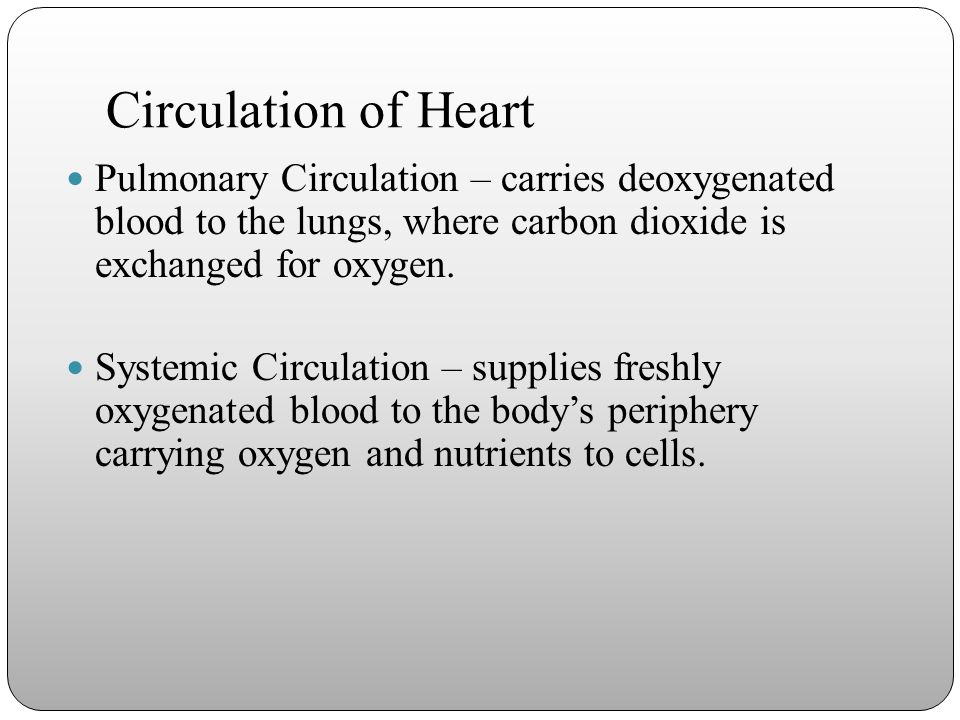 Circulation of Heart Pulmonary Circulation – carries deoxygenated blood to the lungs, where carbon dioxide is exchanged for oxygen.