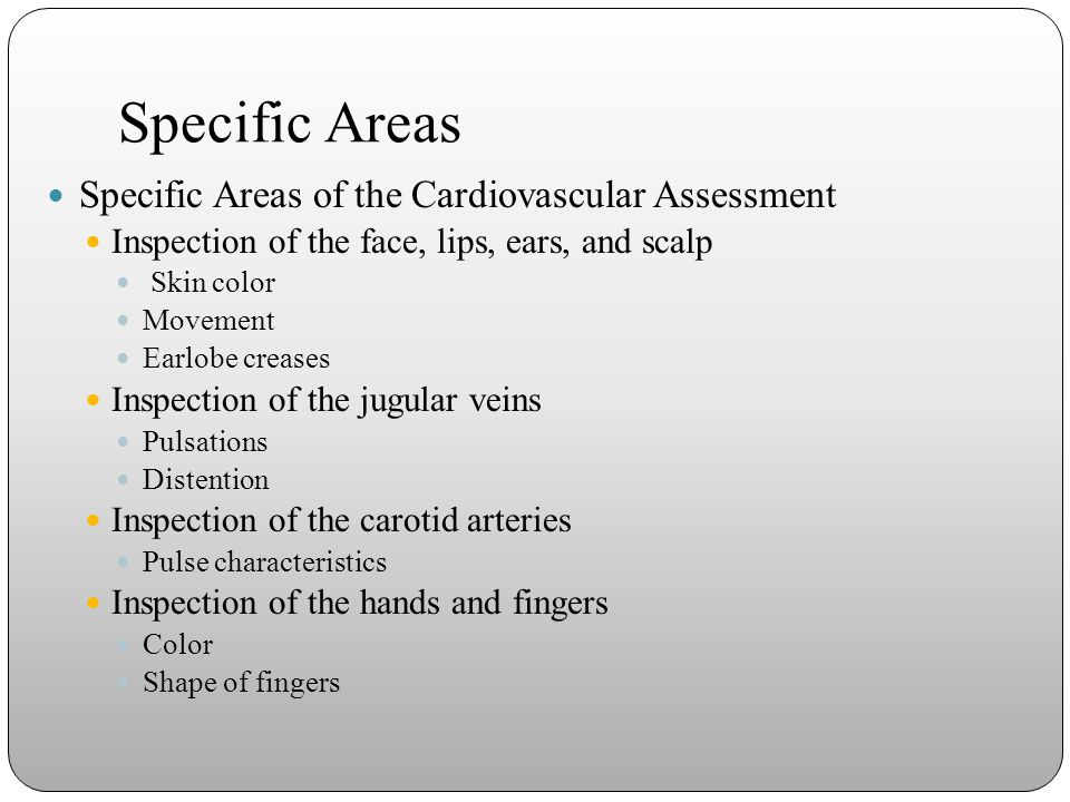Specific Areas Specific Areas of the Cardiovascular Assessment