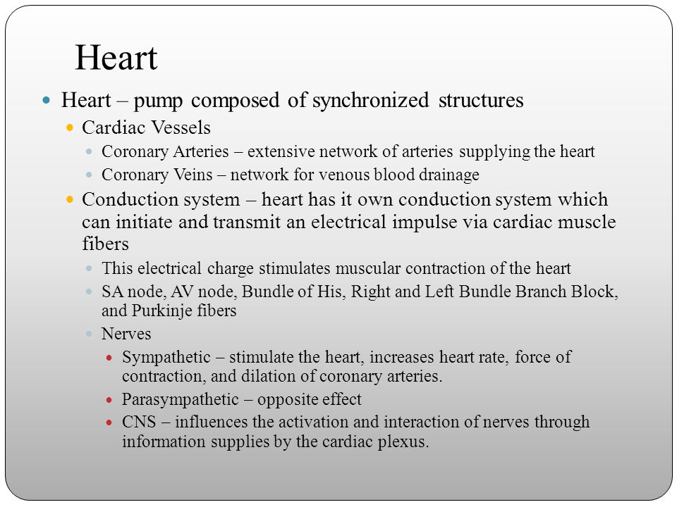 Heart Heart – pump composed of synchronized structures Cardiac Vessels