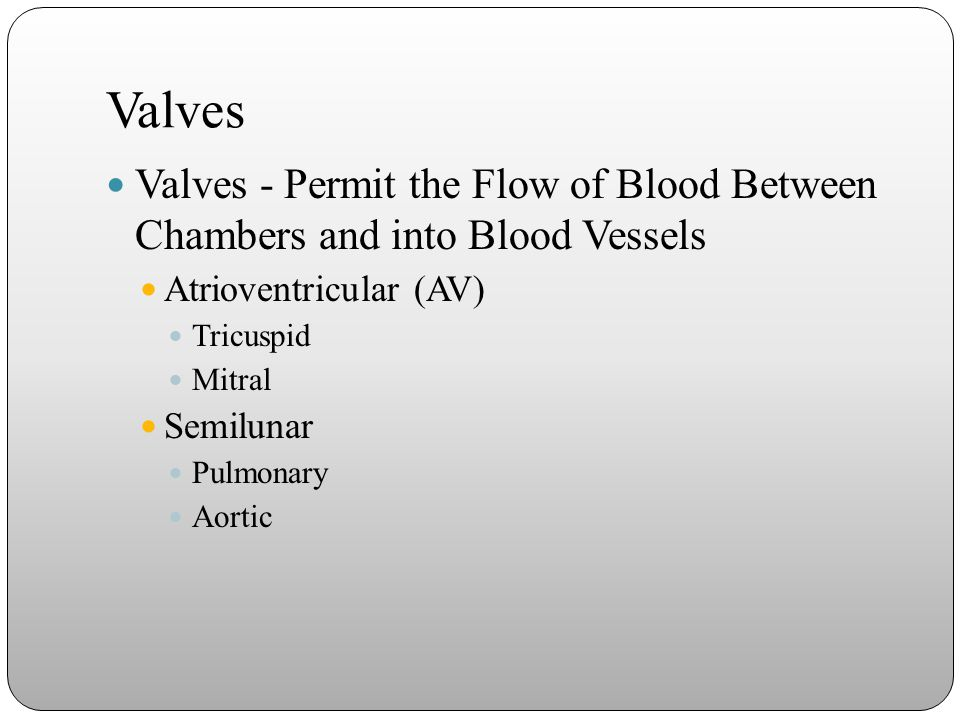 Valves Valves - Permit the Flow of Blood Between Chambers and into Blood Vessels. Atrioventricular (AV)