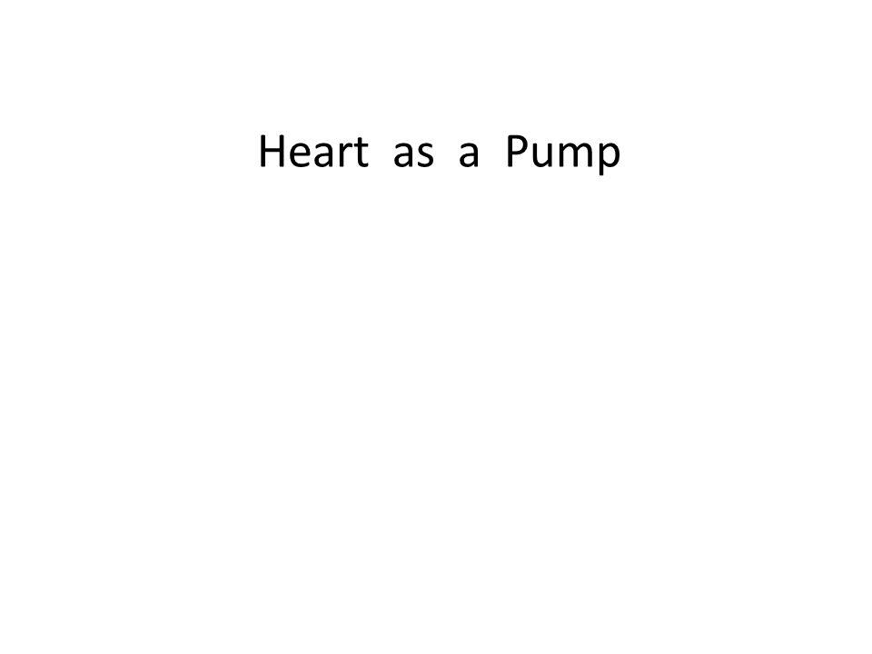 Heart as a Pump