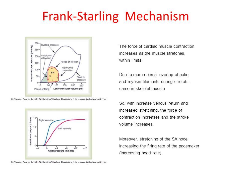 Frank-Starling Mechanism