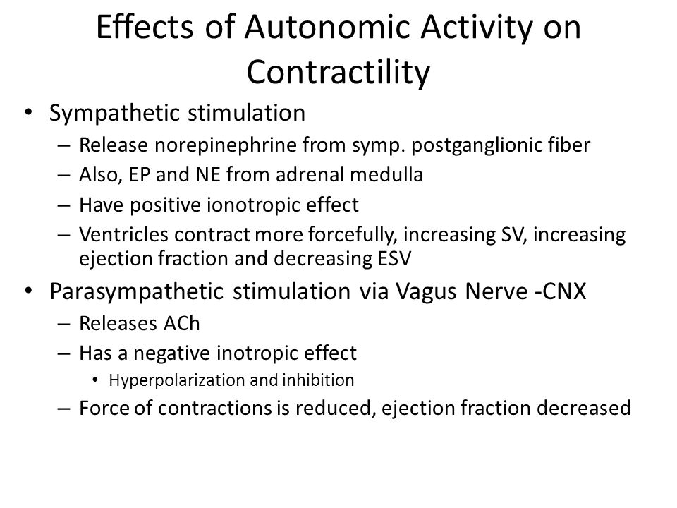 Effects of Autonomic Activity on Contractility
