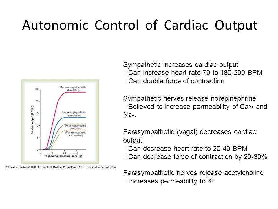 Autonomic Control of Cardiac Output