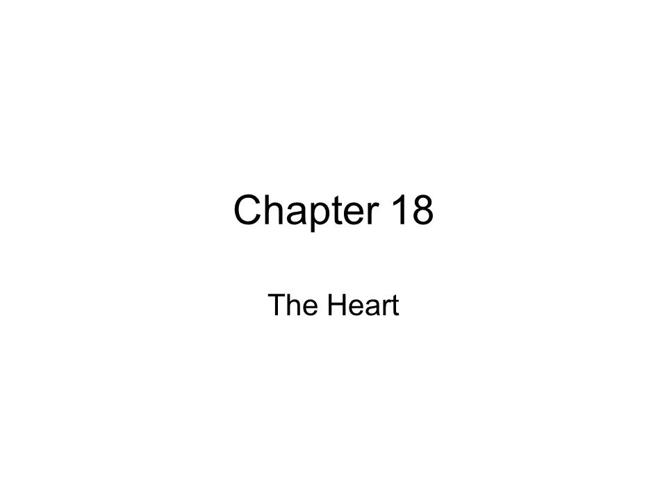 Chapter 18 The Heart