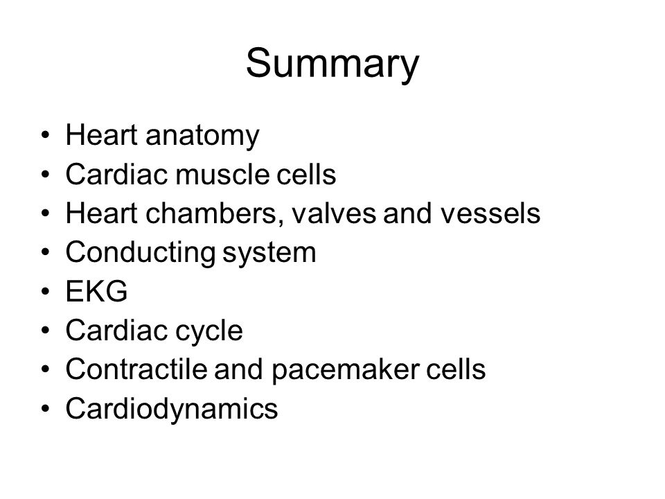 Summary Heart anatomy Cardiac muscle cells