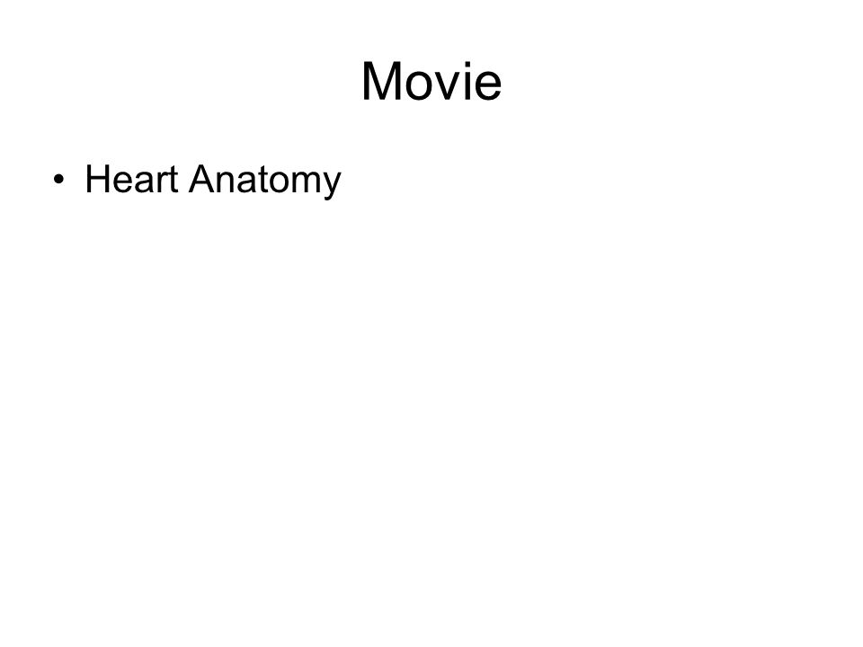 Movie Heart Anatomy