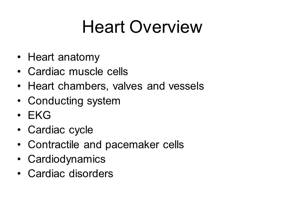 Heart Overview Heart anatomy Cardiac muscle cells
