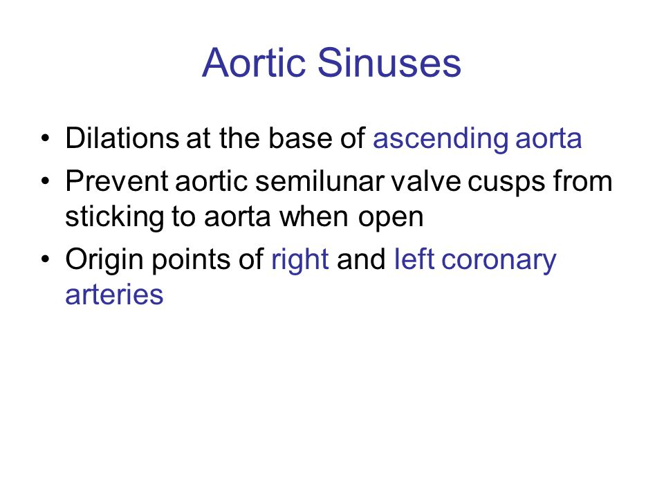 Aortic Sinuses Dilations at the base of ascending aorta