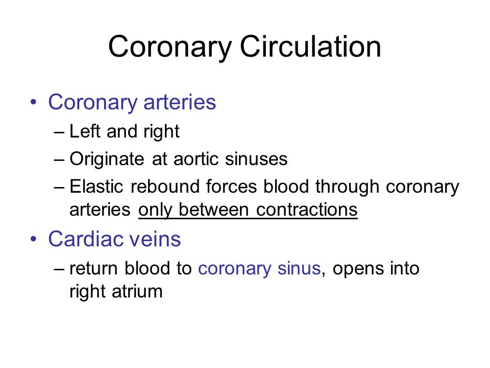 Coronary Circulation Coronary arteries Cardiac veins Left and right