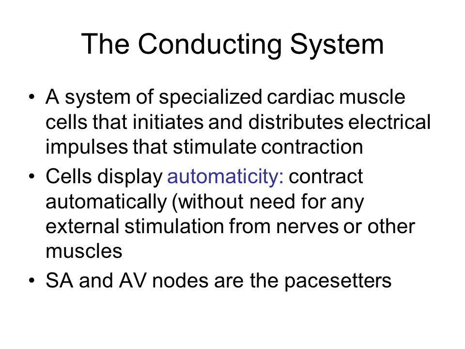 The Conducting System A system of specialized cardiac muscle cells that initiates and distributes electrical impulses that stimulate contraction.