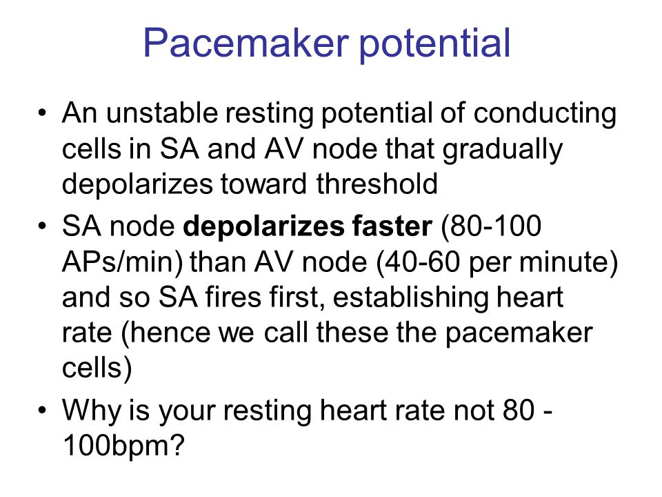 Pacemaker potential An unstable resting potential of conducting cells in SA and AV node that gradually depolarizes toward threshold.