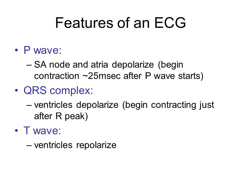 Features of an ECG P wave: QRS complex: T wave: