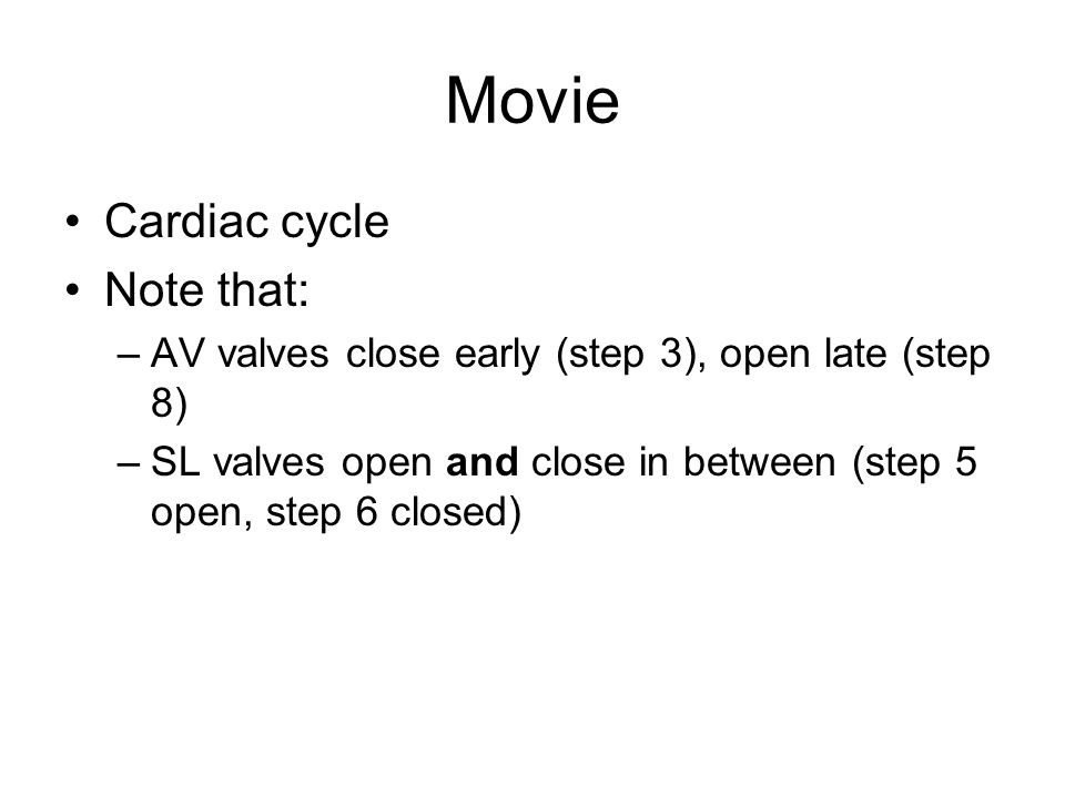Movie Cardiac cycle Note that: