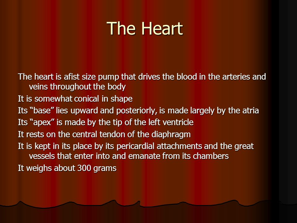 The Heart The heart is afist size pump that drives the blood in the arteries and veins throughout the body.