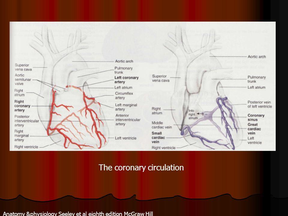 The coronary circulation