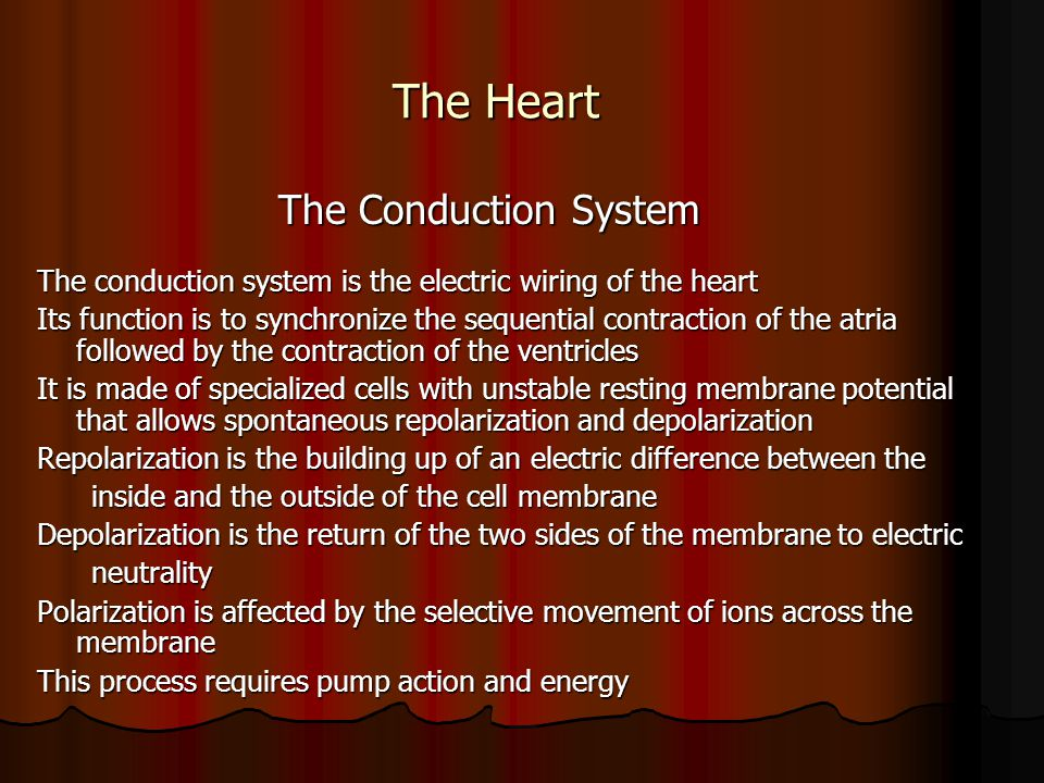 The Heart The Conduction System